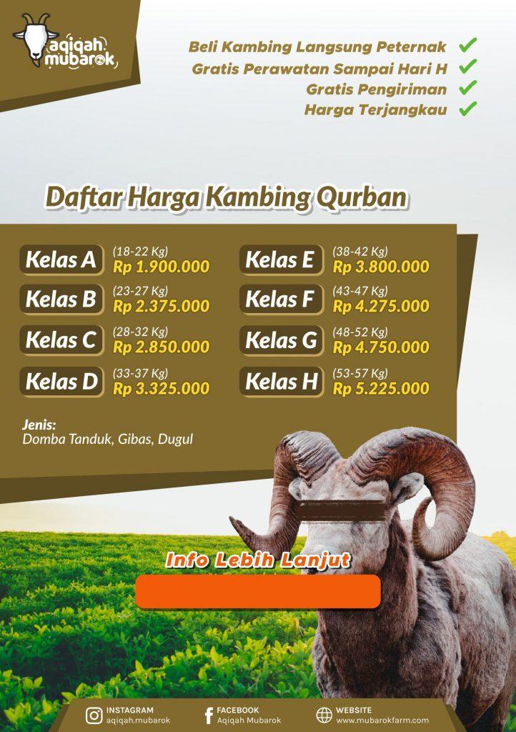 Jual DOmha Qurban Semarang